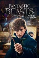 Nonton Fantastic Beasts and Where to Find Them (2016) Subtitle Indonesia