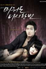 Nonton Streaming Download Drama Hateful But Once Again (2009) Subtitle Indonesia