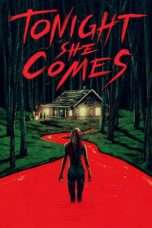 Nonton Streaming Download Drama Tonight She Comes (2016) Subtitle Indonesia