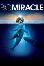 Nonton Streaming Download Drama Big Miracle (2012) jf Subtitle Indonesia
