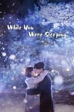 Nonton Streaming Download Drama While You Were Sleeping (2017) Subtitle Indonesia