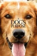 Nonton Film A Dog's Purpose Download Streaming Movie Bioskop Subtitle Indonesia