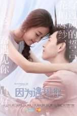 Nonton Because Of You (2017) Subtitle Indonesia