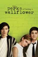 Nonton The Perks of Being a Wallflower (2012) Subtitle Indonesia
