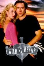 "Nonton Film Wild at Heart (<a href=""https://dramaserial.tv/year/1990/"" rel=""tag"">1990</a>) 