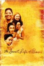 Nonton Streaming Download Drama The Secret Life of Bees (2008) Subtitle Indonesia