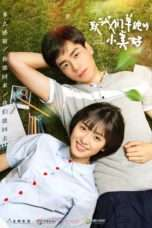 Nonton A Love So Beautiful / 致我们单纯的小美好 (2017) Subtitle Indonesia