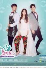 Nonton Streaming Download Drama Single Wife (2017) Subtitle Indonesia
