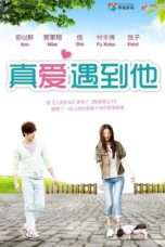 Nonton Streaming Download Drama Go, Single Lady (2014) Subtitle Indonesia