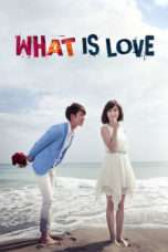 Nonton Streaming Download Drama What Is Love (2012) Subtitle Indonesia