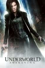 Nonton Streaming Download Drama Underworld: Awakening (2012) Subtitle Indonesia
