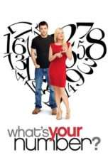 Nonton What's Your Number? (2011) Subtitle Indonesia