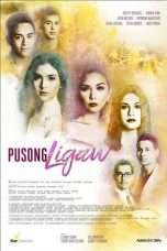 Nonton Streaming Download Drama Pusong Ligaw (2017) Subtitle Indonesia