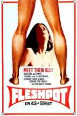 Nonton Streaming Download Drama Fleshpot on 42nd Street (1973) Subtitle Indonesia