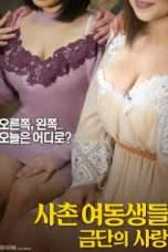 Nonton Streaming Download Drama Cousin sisters love of forbidden (2018) Subtitle Indonesia