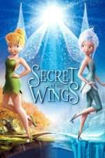 Nonton Streaming Download Drama Secret of the Wings (2012) Subtitle Indonesia