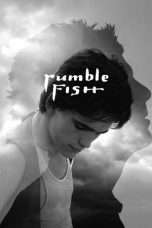 Nonton Streaming Download Drama Rumble Fish (1983) gt Subtitle Indonesia