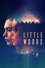 Nonton Streaming Download Drama Little Woods (2018) Subtitle Indonesia