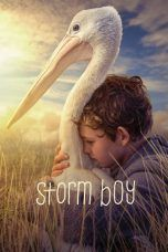 Nonton Streaming Download Drama Storm Boy (2019) Subtitle Indonesia