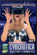 Nonton Streaming Download Drama Cyberotica: Computer Escapes (1996) Subtitle Indonesia
