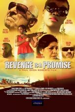 Nonton Streaming Download Drama Revenge is a Promise (2018) Subtitle Indonesia