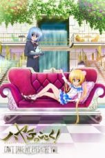 Nonton Streaming Download Drama Hayate no Gotoku! Can't Take My Eyes Off You (2012) Subtitle Indonesia