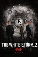Nonton The White Storm 2: Drug Lords (2019) Subtitle Indonesia