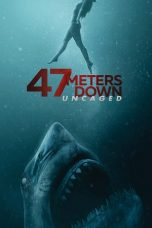 Nonton Streaming Download Drama 47 Meters Down: Uncaged (2019) jf Subtitle Indonesia