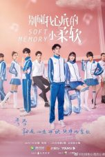 Nonton Streaming Download Drama Soft Memory (2019) Subtitle Indonesia