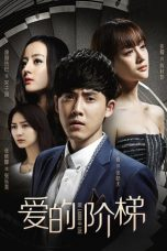 Nonton Streaming Download Drama The Ladder of Love (2016) Subtitle Indonesia