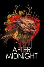 Nonton Streaming Download Drama After Midnight (2020) jf Subtitle Indonesia