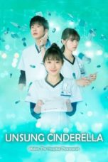 Nonton Unsung Cinderella: Midori, The Hospital Pharmacist (2020) Subtitle Indonesia