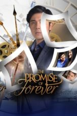 Nonton The Promise of Forever (2017) Subtitle Indonesia