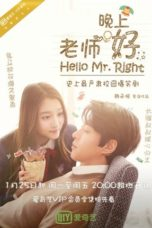 Nonton Hello Mr. Right (2016) Subtitle Indonesia