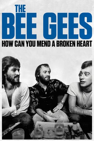 Nonton Film The Bee Gees: How Can You Mend a Broken Heart 2020 Sub Indo