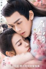 Nonton Time Flies and You are Here (2021) Subtitle Indonesia