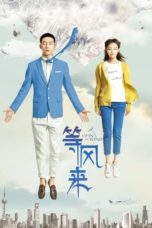 Nonton Up in the Wind (2013) Subtitle Indonesia